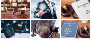 Immigration Lawyer in nigeria
