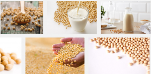 Soybeans price in nigeria